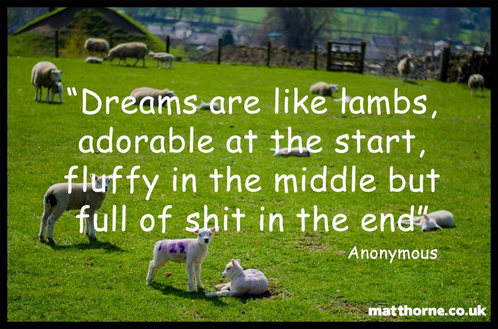 """Dreams are like lambs, adorable at the start, fluffy in the middle but full of shit in the end"""