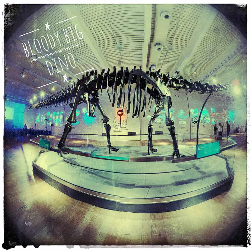 A fish eye lens photo of a diplodocus skeleton that has been made to look grungy with filters